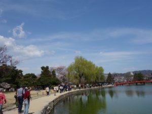 観光客でにぎわう松本城