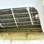 コウモリ侵入防止用の網